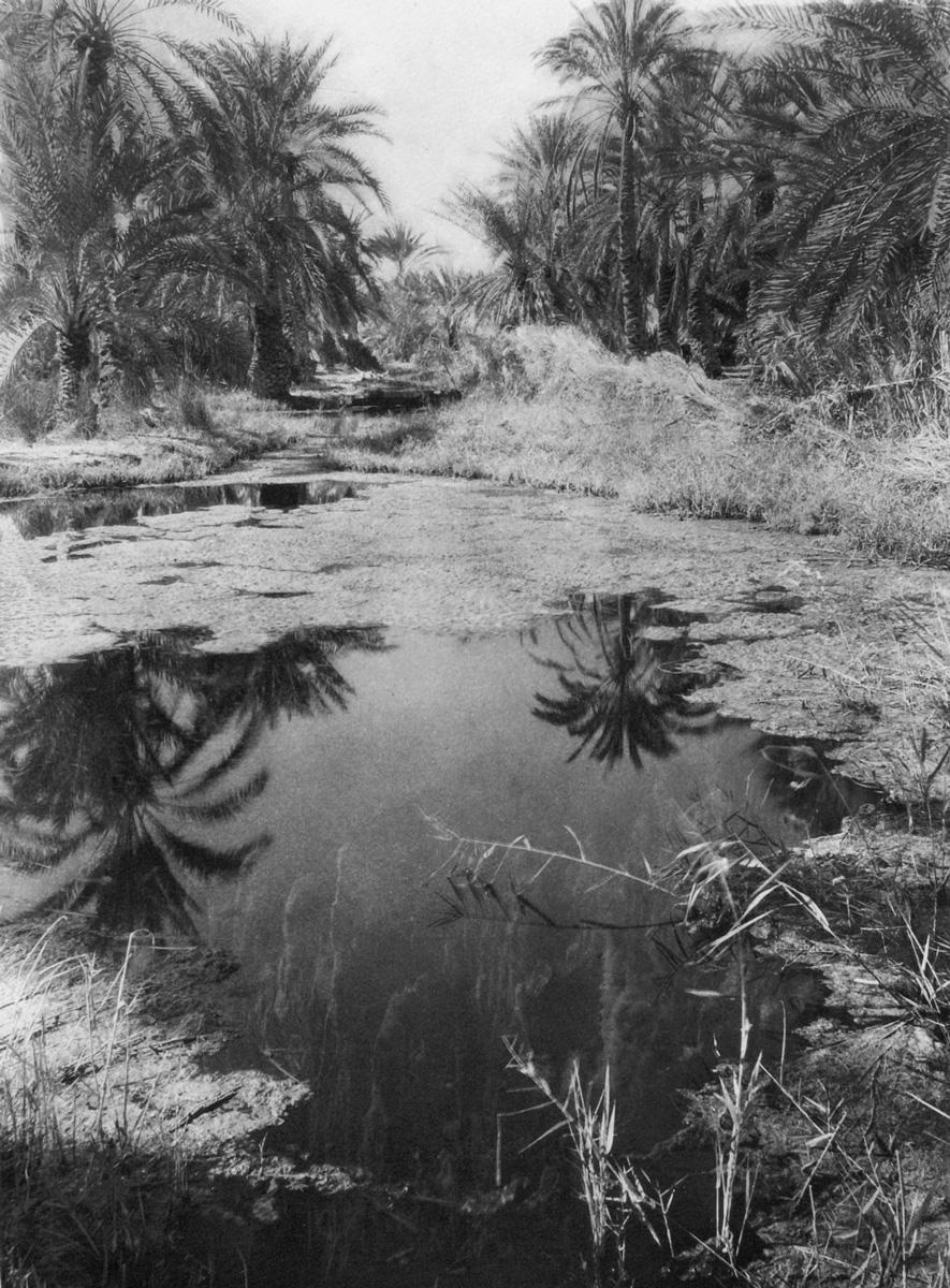 Fred Boissonnas, <em>Μια πηγή. Όαση της Σίβας, 1929-30</em><br/>Συλλογή Ιωάννη Τρικόγλου, Κεντρική Βιβλιοθήκη ΑΠΘ